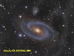 Galaxia Espiral M81