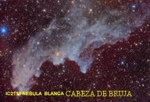 IC2118 NEBULA BLANCA