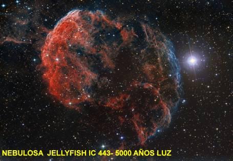 IC443-NEBULOSA JELLYFISH 5000 AÑOS LUZ