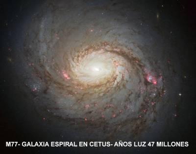 M 77 galaxia espiral 47 millones años luz en CETUS