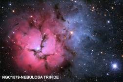 Nebuloa Trifide