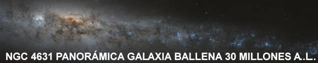 NGC 4631 Panoramica Galaxia Ballena 30 Millones A.L.