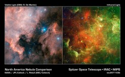 """This image layout compares visible (left) and infrared views of the North America nebula, taken by the Digitized Sky Survey and NASA's Spitzer Space Telescope, respectively. The nebula is named after its resemblance to the North America content in visible light. This visible view highlights the eastern seaboard and Gulf of Mexico regions. In infrared light, the continent disappears. The """"Mexican Riviera"""" -- the west coast of Mexico -- seems to invert in texture and brightness, as does the """"neck"""" region of the Pelican nebula, named for its resemblance to a pelican. This nebula can be seen to the right of the North America nebula in the visible image. The Gulf of Mexico transforms from a dark cloud into a """"river"""" of hundreds of young stars. These pictures look different in part because infrared light can penetrate dust whereas visible light cannot. Dusty, dark clouds in the visible image become transparent in Spitzer's view. In addition, Spitzer's infrared detectors pick up the glow of dusty cocoons enveloping baby stars. The Spitzer image contains data from both its infrared array camera and multiband imaging photometer. Light with a wavelength of 3.6 microns has been color-coded blue; 4.5-micron light is blue-green; 5.8-micron and 8.0-micron light are green; and 24-micron light is red."""
