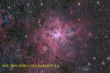 NGC2070-- Nebulosa Tarantula