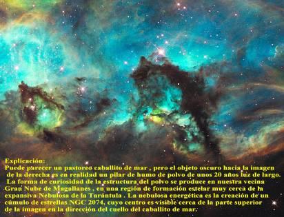 ngc2074_Seahorse de la Gran Nube de Magallanes