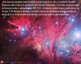 NGC2264 NEBULOSA DEL CONO MONOCEROS