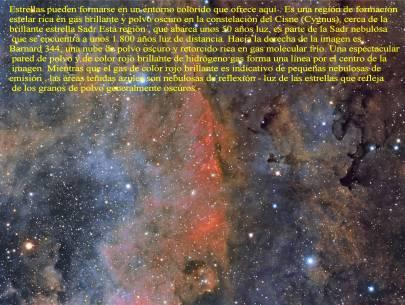 Nubes y estrellas de Colores en Cygnus