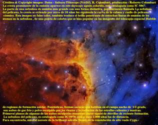 IC 5067 NEBULOSA PELICANO