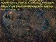 lynd-dark-nebula-1251