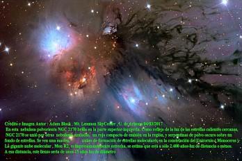 NGC 2170 NEBULOSA POLVORIENTA CON REFLEJO DE POLVO
