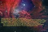 ngc-2264-la-nebulosa-de-la-piel-de-fox