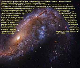NGC 2442 GALAXIA EN VOLANS