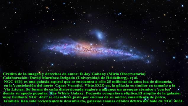 NGC4631 Galaxia Ballena espiral