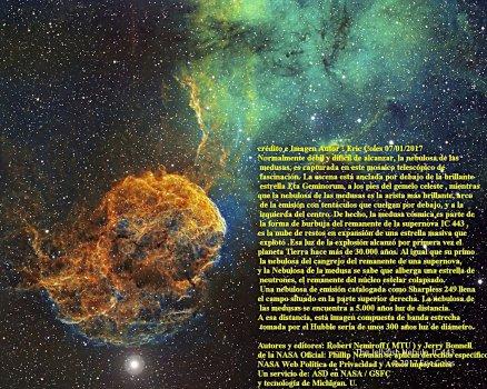 sharpless-249-y-la-nebulosa-de-las-medusas