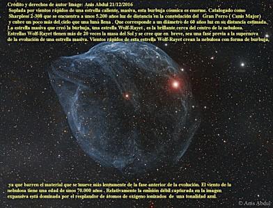 sharpless-308-estrella-de-la-burbuja