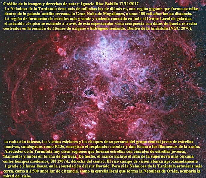 NGC 2070 NEBULOSA TARANTULA.jpg