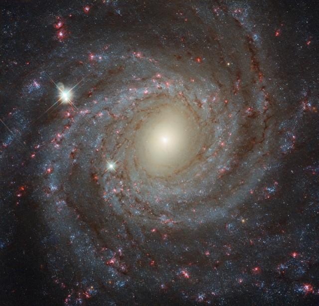 NGC3344_Galaxia de frente.jpg